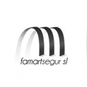 fmgs logotipo