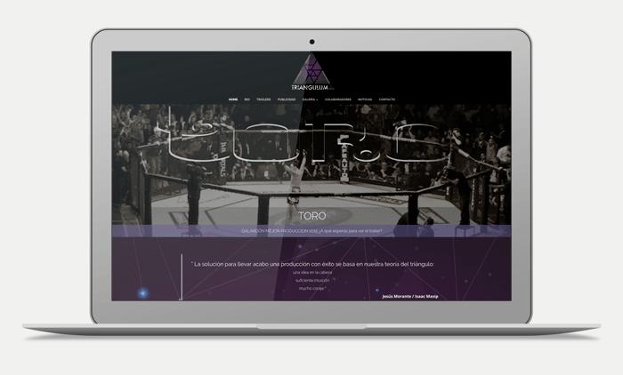 triangulum web portfolio