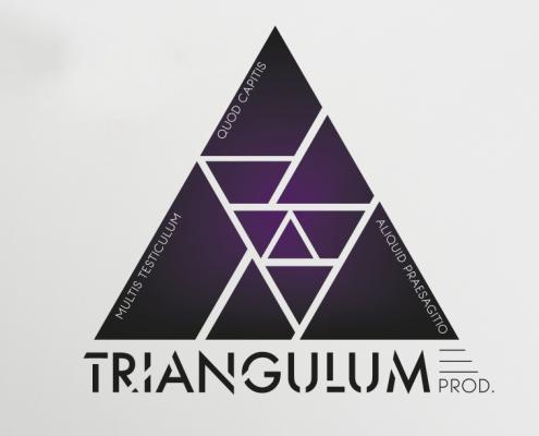 triangulum logo