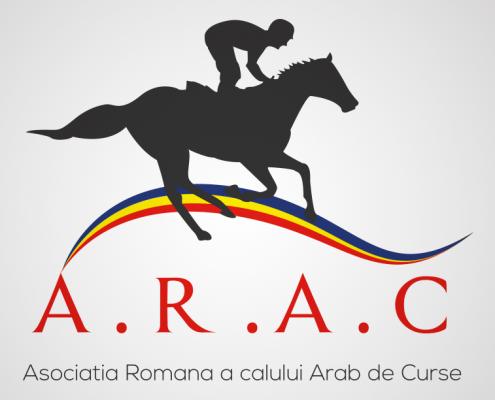 ARAC diseño gráfico